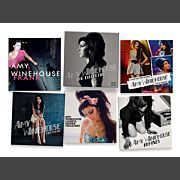 Amy Winehouse The Collection (5CD)